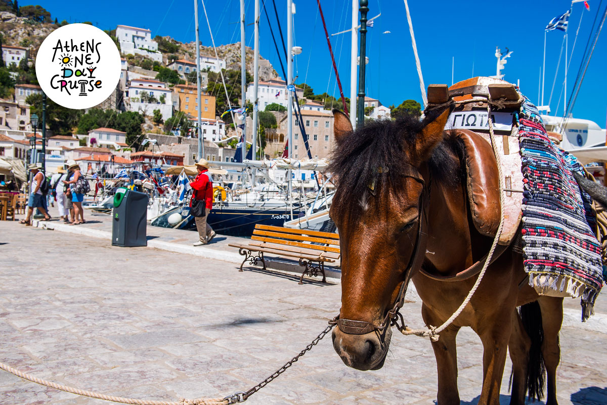 "Hydra – Destination without ""traffic"" 