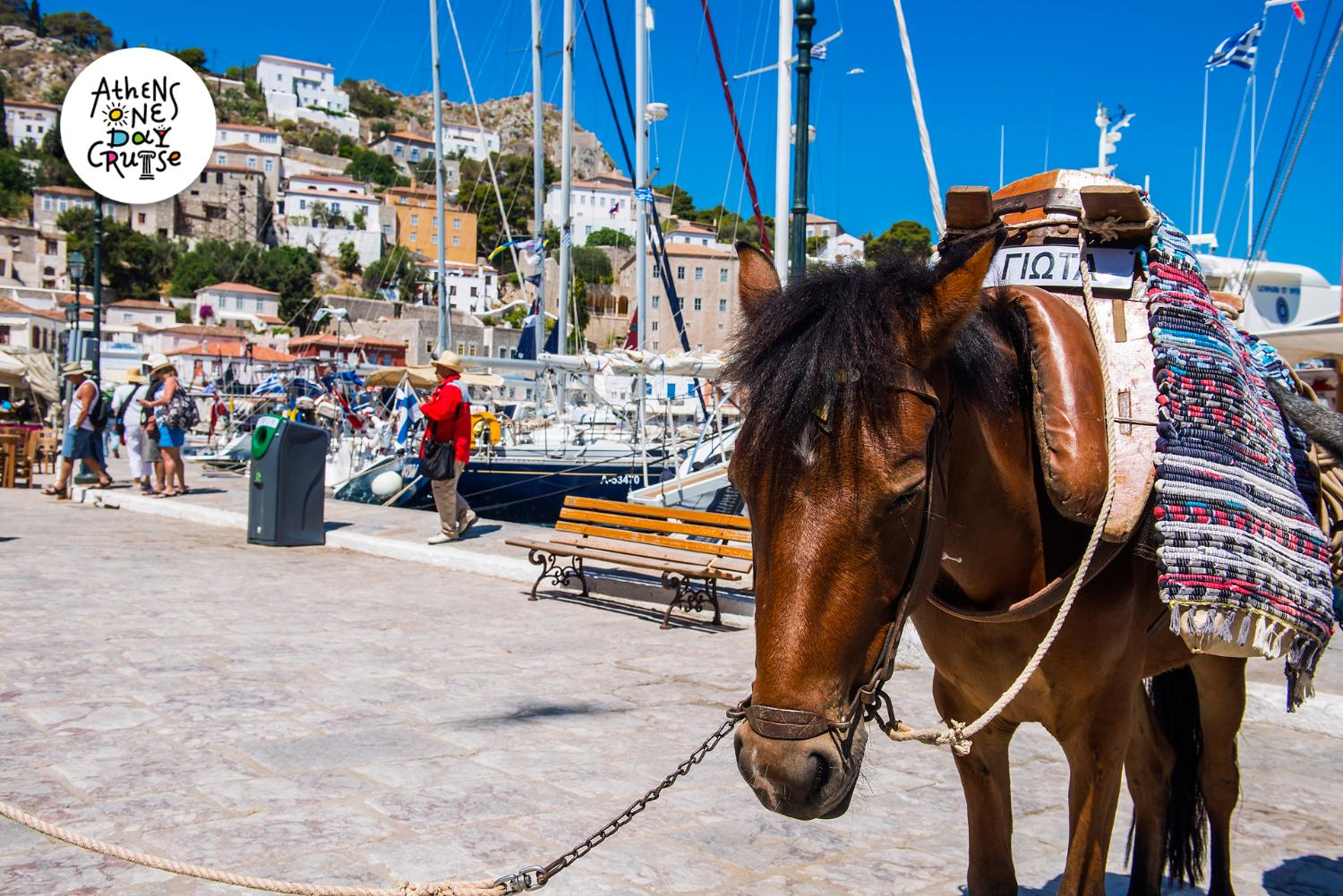 Hydra - A Saronic island full of history and secrets!